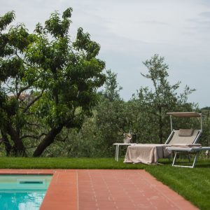 Relais Villa Olmo charming hotel Tuscany: swimming pool surrounded by tuscan landscape