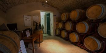 Cellar and Diadema wines at Relais Villa Olmo wine resort Tuscany