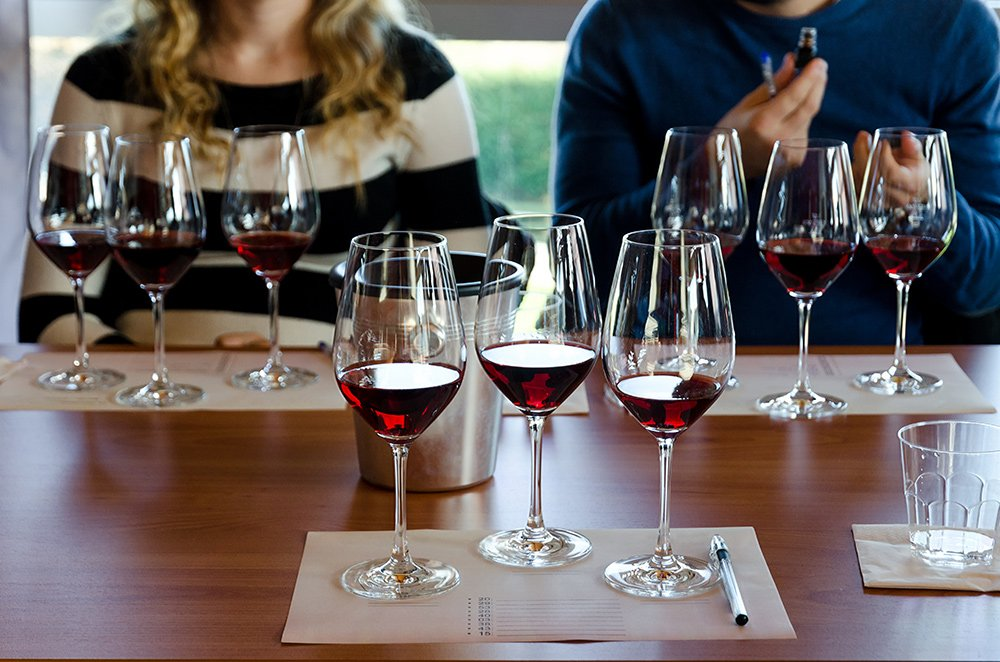 learn the techniques of wine making during the wine lab at Relais Villa Olmo wine resort with pool tuscany